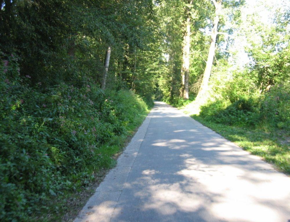 Día 6: Etapa en bicicleta  Enns-Grein (53 Km)