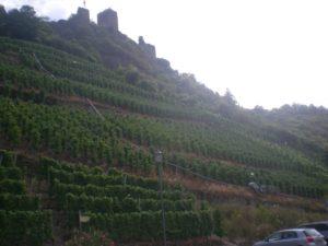Castillo Metternich. Beilstein